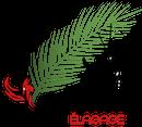 Phoenix élagage
